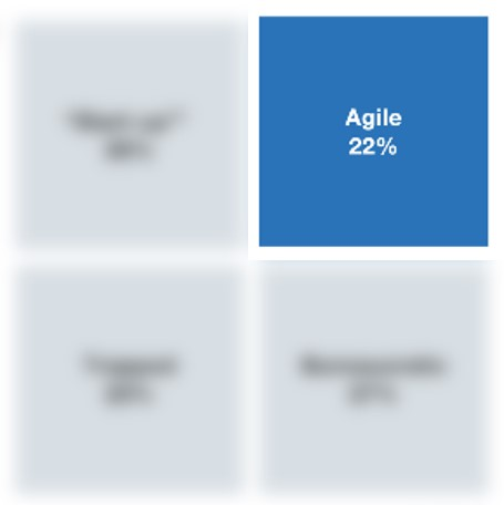 McK_Agile